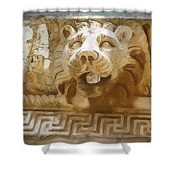 Do-00313 Lion Water Feature Shower Curtain