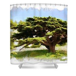 Do-00319 Cedar Tree Shower Curtain