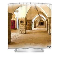Do-00324 Beiteddine Gallery Shower Curtain