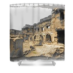 Shower Curtain featuring the photograph Do-00452 Inside The Ruins by Digital Oil