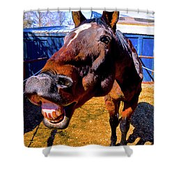 Do You Have A Treat For Me? Shower Curtain