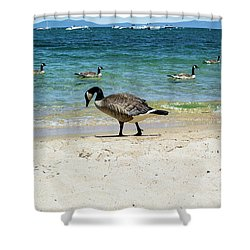Do Your Own Thing Shower Curtain