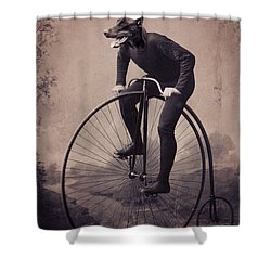 Doberman Velocipede Shower Curtain by Aged Pixel