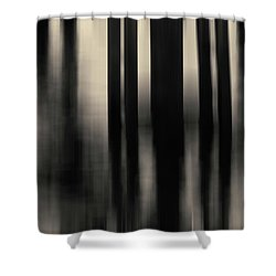 Shower Curtain featuring the photograph Dock And Reflection I Toned by David Gordon