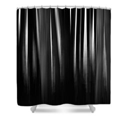 Shower Curtain featuring the photograph Dock And Reflection II Bw by David Gordon