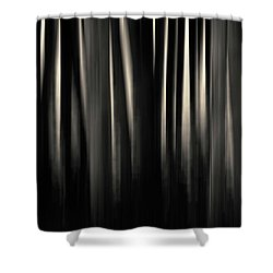 Shower Curtain featuring the photograph Dock And Reflection II Toned by David Gordon