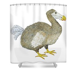 Dodo Bird Protrait Shower Curtain