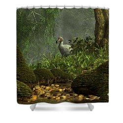 Dodo Creek Shower Curtain by Daniel Eskridge