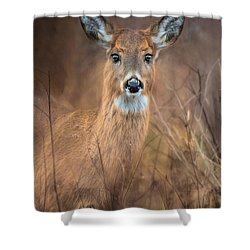 Shower Curtain featuring the photograph Doe A Deer by Robin-Lee Vieira