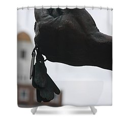 Does Time Heal? Shower Curtain