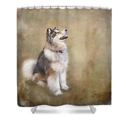 Shower Curtain featuring the digital art Master Of The Domain by Colleen Taylor