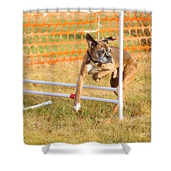 Shower Curtain featuring the photograph Dog Agility by Debbie Stahre