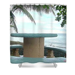 Dog By The Beach In Rincon Shower Curtain