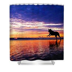 Dog Chasing Stick At Sunrise Shower Curtain