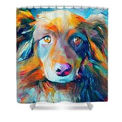 Dog Colorful Portrait Shower Curtain