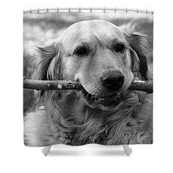 Dog - Monochrome 4 Shower Curtain