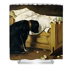 Dog Mourning Its Little Master Shower Curtain by A Archer