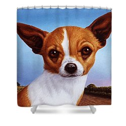Dog-nature 3 Shower Curtain by James W Johnson