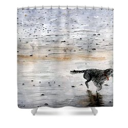 Shower Curtain featuring the painting Dog On Beach by Chriss Pagani