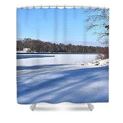 Dog Pond In Winter 1 Shower Curtain