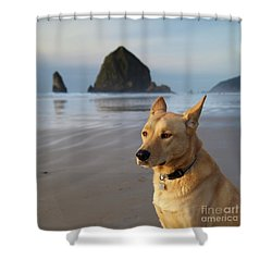 Dog Portrait @ Cannon Beach Shower Curtain