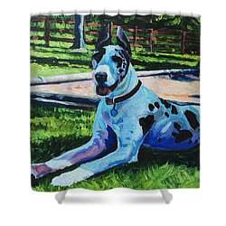Dog Portrait Shower Curtain