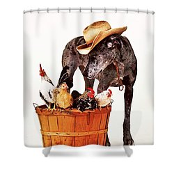 Shower Curtain featuring the photograph Dog Sitter by Susan Stone