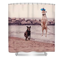 Dog With Frisbee Shower Curtain