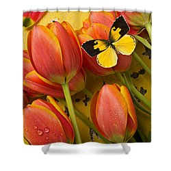 Dogface Butterfly And Tulips Shower Curtain by Garry Gay