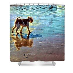 Doggone Beachy Day Shower Curtain