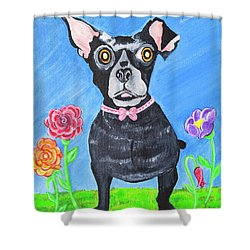 Doggone Delightful Shower Curtain