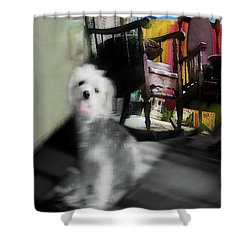 Dogie In The Patio Art  Shower Curtain