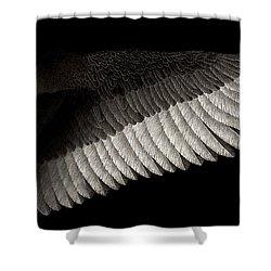 Dogma Shower Curtain by Pat Erickson