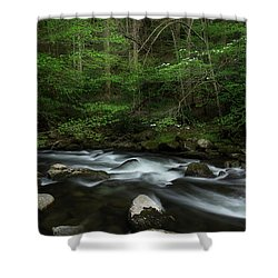 Shower Curtain featuring the photograph Dogwood Along The River by Mike Eingle