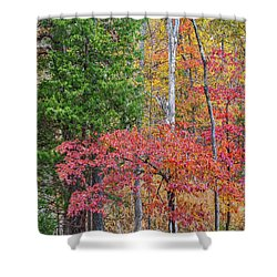 Dogwood And Cedar Shower Curtain