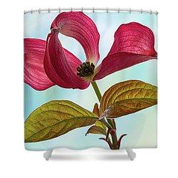 Dogwood Ballet 4 Shower Curtain