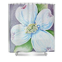 Dogwood Bloom Shower Curtain by Loretta Nash