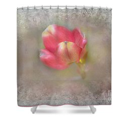 Shower Curtain featuring the photograph Dogwood Bud by Brenda Bostic