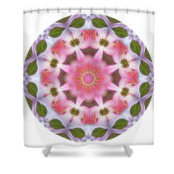 Dogwood Energy Mandala Shower Curtain