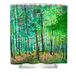 Dolly Sods Trees Shower Curtain by David Bartsch