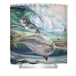 Dolphin 2 Shower Curtain by William Love