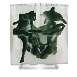 Dolphin Bonds Shower Curtain by Frederick Dost