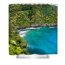 Shower Curtain featuring the photograph Dolphin Cove by Debbie Karnes