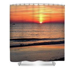 Dolphin Jumping In The Sunrise Shower Curtain