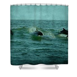 Dolphins Shower Curtain by Sandy Keeton
