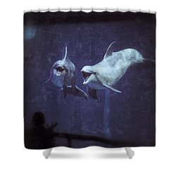 Dolphinspiration Shower Curtain
