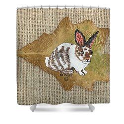 domestic Rabbit Shower Curtain