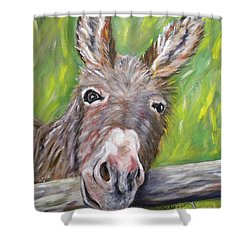 Dominic The Donkey Shower Curtain
