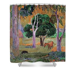 Dominican Landscape Shower Curtain by Paul Gauguin
