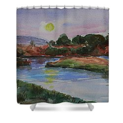 Shower Curtain featuring the painting Don Edwards San Francisco Bay National Wildlife Refuge Landscape 1 by Xueling Zou